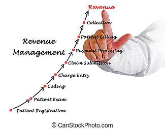 diagramme, gestion, revenu
