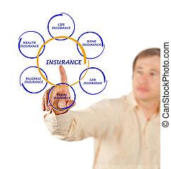diagramme, homme, assurance, présentation