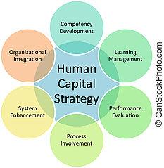 diagramme, humain, business, capital