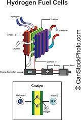 diagramme, hydrogène