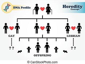 diagramme, profil, héréditaire, adn, (genetic), (forensic, ...