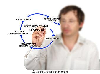 diagramme, services, professionnel