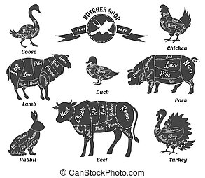 Diagrams for butcher shop. Animal silhouette, beef and cow, turkey and goose, pork and sheep. Vector illustration