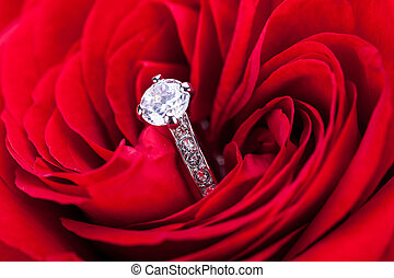 Overhead view of a diamond engagement ring nestling in the heart of a red rose amongst the soft petals