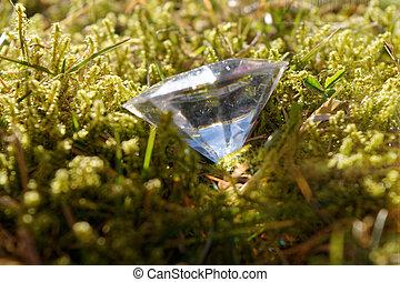Diamond in a meadow
