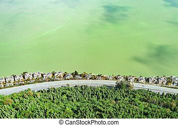 dianchi, aérien, lake., maisons, riche, route, vue