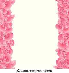 Pink Carnation Flower Border