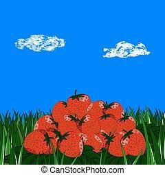 diapositiva, fresas, en la hierba, en, cielo azul
