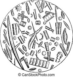 Diatoms, microscopic pictures, vintage engraving. - Diatoms,...