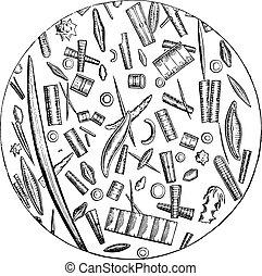 diatoms, mikroskopijny, obrazy, rocznik wina, engraving.