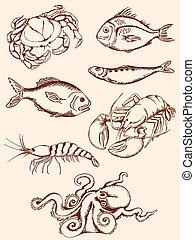 dibujado, mariscos, mano, iconos