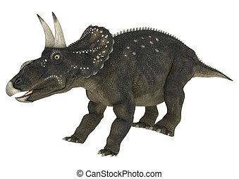 diceratops, dinosaurio