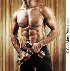 dichtbegroeid boven, aanzicht, op, gespierd, mannelijke , torso, man, vasthouden, kleine, glanzend, du