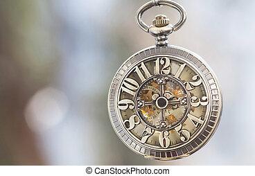 dichtbegroeid boven, op, ouderwetse , broekzak uurwerk