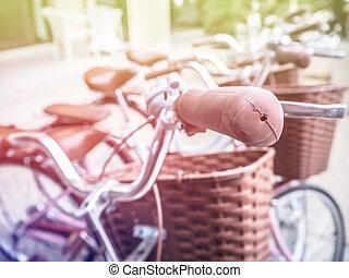 dichtbegroeid boven, oude fiets, hand