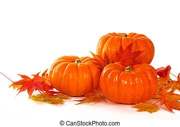 dichtbegroeid boven, samenstelling, van, pompoennen, en, bladeren, op, de, tafel.