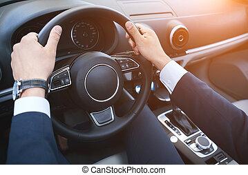 dichtbegroeid boven, van, man, handen, rijden van een auto,...