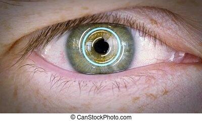 dichtbegroeid boven, van, mannelijke , oog, met, iris, of,...