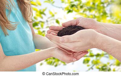dichtbegroeid boven, van, vader, en, meisje, handen, vasthouden, spruit