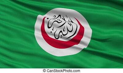 dichtbegroeid boven, zwaaiende , nationale vlag, van, oic