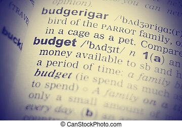 dictionary., gros plan, mot, budget