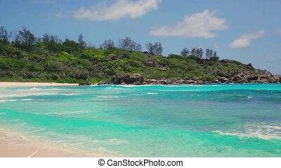 died tree and small waves in white beach at Seychelles...