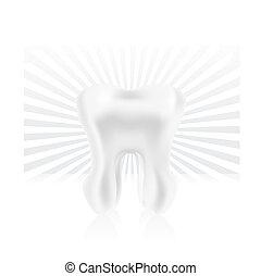 diente, photo-realistic