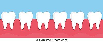dientes, goma, ilustración, vector