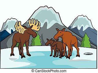 dier, landschap, ijs