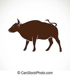dieren, achtergrond., vector, stier, wild, witte