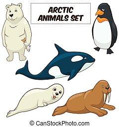 dieren, arctisch, vector, set, spotprent