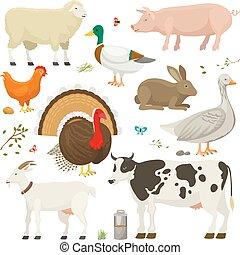 dieren, boerderij, set, vector.