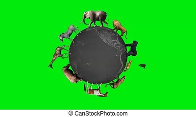dieren, cirkel, de wereld, globe