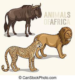 dieren, set2, afrikaan