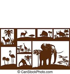 dieren, verzameling, (vector), afrikaan