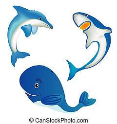 dieren, zee