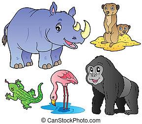 dierentuin, dieren, set, 1