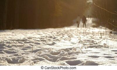 dieser, gleichfalls, a, kugel, von, a, laufen, in, malerisch, winter, park.