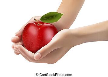 diet., hands., 熟した, vector., アップル, 赤, 概念