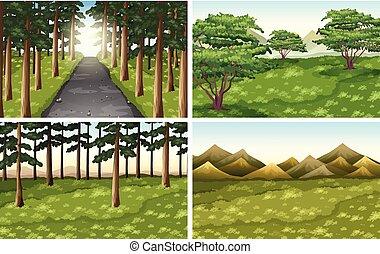 diferente, ao ar livre, jogo, cenas, natureza