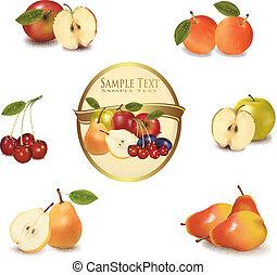 diferente, fruta, ouro, etiqueta