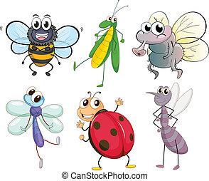 diferente, insectos