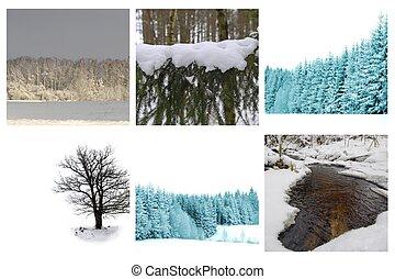 diferente, invierno, cuadros