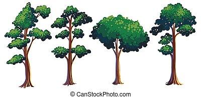diferente, jogo, árvore