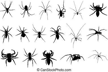 diferente, jogo, aranhas