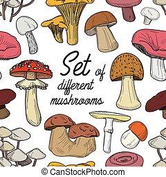 diferente, jogo, padrão, cogumelos