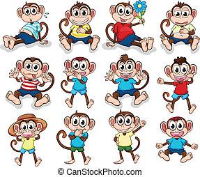 diferente, monos, emociones