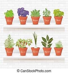 diferente, orgânica, gourmet, cerâmico, cobrança, ervas, plantado