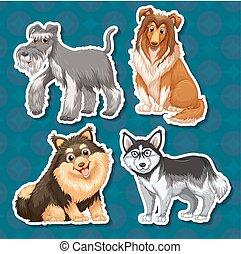diferente, tipo, cachorros