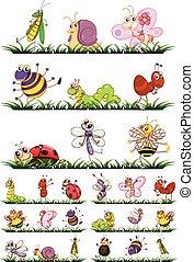 diferente, tipos, de, insectos, en, pasto o césped